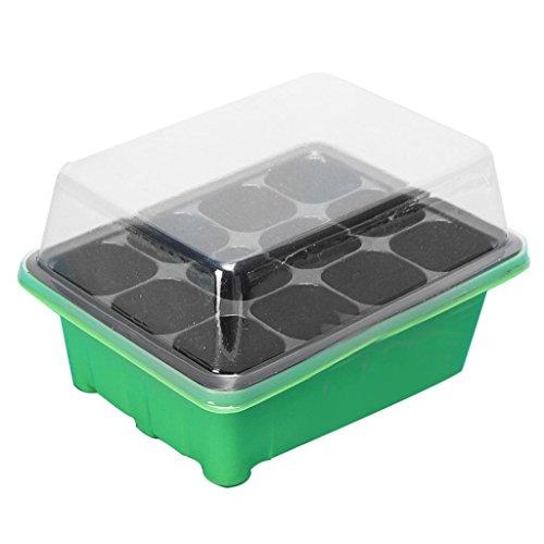 DAEDALUS® Boîte de semences à 12 cellules pour semis, Plastique, Vert/noir, Taille unique