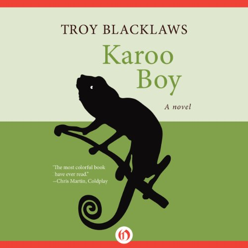 Karoo Boy audiobook cover art