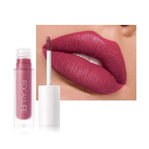 FOCALLURE Liquid Lipstick, Matte Lip Stain, Long Lasting Waterproof Lip Gloss, Non-Stick Cup Lip color Lip Makeup Gift, FA134-16100-9
