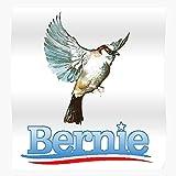fashionAAA 2016 2020 Icon Not Me Us Bernie Revolution Birdy