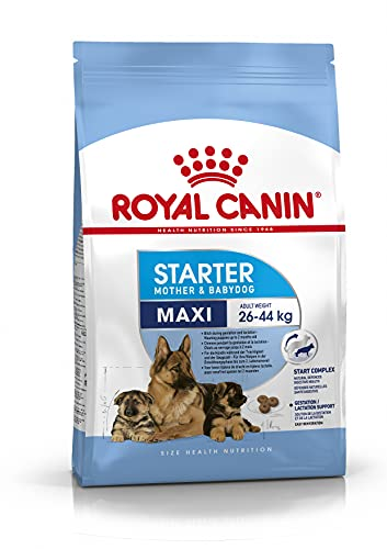 Royal Canin C-08442 S.N. Maxi Starter - 15 Kg