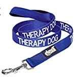 Dex-il Colour Coded Dog Warning Awareness Harnesses Leads Collars Coats - THERAPY DOG (Standard Lead 120cm)