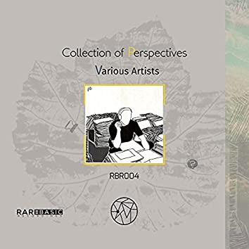 Collection Of Perspectives