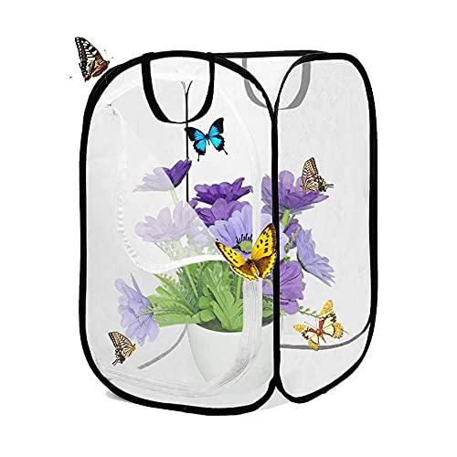 Ritte 1 Pieza Jaula Hábitat Mariposa, Jaula Hábitat Plantas, Jaula Malla Plegable para Hábitat Insectos, Reproducción Plántulas