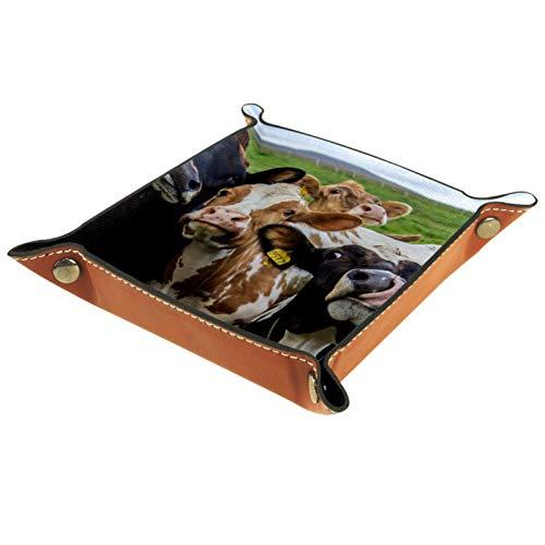 Caja de almacenamiento pequeña, bandeja de valet para hombre,Animales Vaca Gracioso Pasto Prairie,Organizador de cuero para llaves de caja de monedas