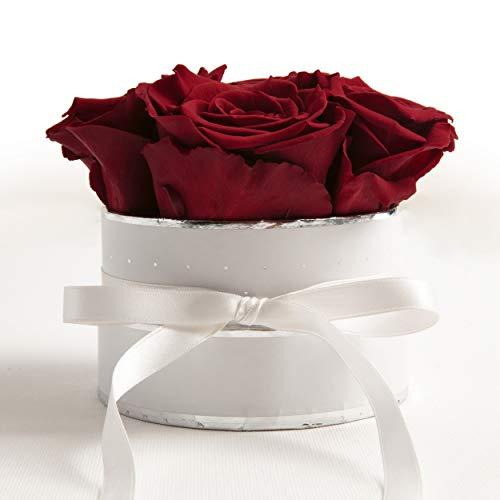 ROSEMARIE SCHULZ Heidelberg Flowerbox rund Infinity Rosen - Blumenbox in Weiß 4 konservierte Rosen (Weiß-Burgundy)
