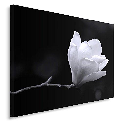 Feeby Frames, Quadro Pannelli, Pannello Singolo, Quadro su Tela, Stampa Artistica, Canvas 80x120 cm, Fiore, BOCCIOLO, Bianco E Nero