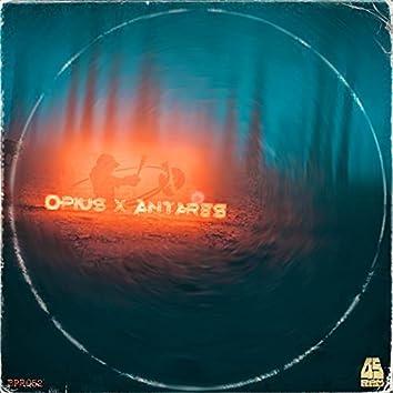 Opius x Antares