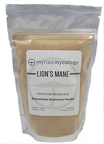 Myriad Mycology Lion