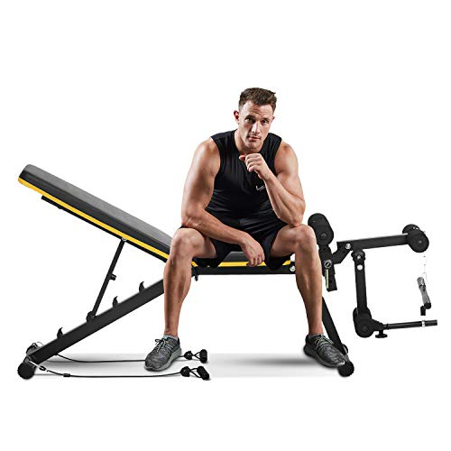 ZENOVA Adjustable Weight Bench, Multi-Purpose Workout Bench Flat Incline Decline Exercise Bench with Leg Extension and Curl , Home Gym Strength Training Bench (Yellow Line)
