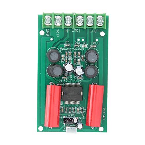 Lazmin Leistungsverstärkerplatine, HW-258 TA2024 Digitales HiFi-Audio-Stereoverstärkermodul für Autocomputer