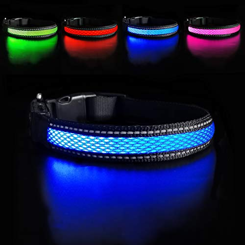 MASBRILL Leuchthalsband für Hunde aufladbar LED hundehalsband Blinkende Lichter mit USB verstellbar 3 Modells und sechs Farben (M, Blau)