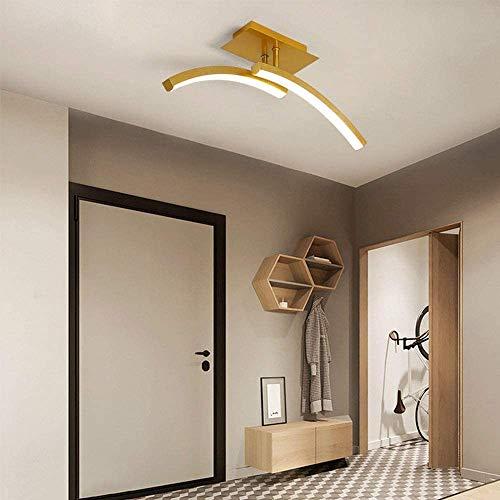 LED CABEZA LED LIGHT LED LED Lámpara Hall Lámpara de techo Dimmable Moderno Lámpara de techo de 2-luz Lámpara de Corredor Lámpara de Corredor Iluminación de techo para sala de estar Restaurante Bedroo