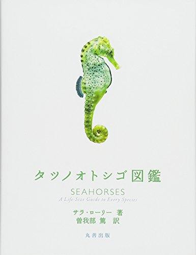 タツノオトシゴ図鑑