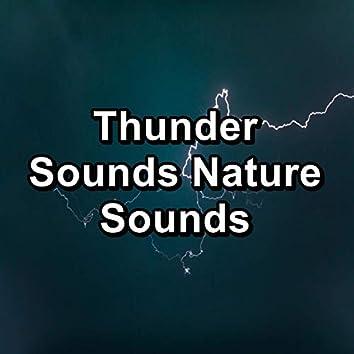 Thunder Sounds Nature Sounds