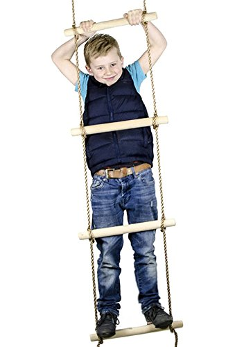 Top rope ladder carnival for 2020