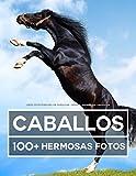 Libro De Fotografía De Caballos – Gran y Asombrosa Colección: 100 Hermosas Fotos En Este Fantástico Libro De Caballos - Libro De Fotos De Animales Para Niños y Adultos