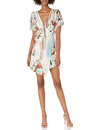 Haute Hippie Women's French Riviera WRAP Dress, striptropez, 6