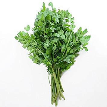 SANHOC Samen-Paket: 7 Samen von Dark Green Italienisch Plain Petersilie