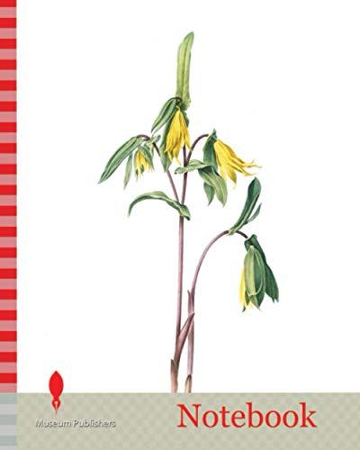 Notebook: Uvularia perfoliata, Uvulaire perfolièe, Bellwort, Wild Oats, Merry-bells, Redouté, Pierre Joseph, 1759-1840, les liliacees, 1802 - 1816