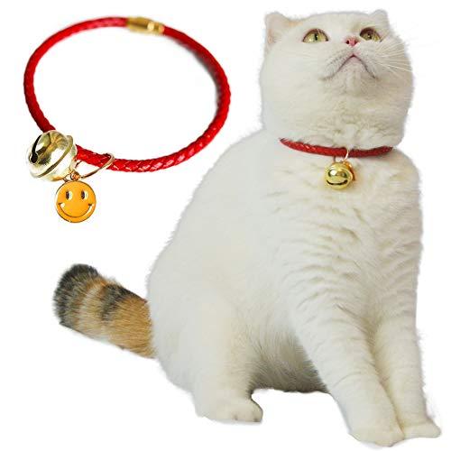 Kukaster-Pet (17)
