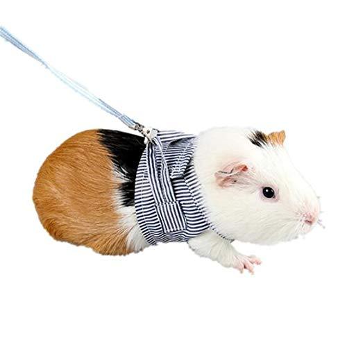 YSINFOD Geschirr für Kleintiere Kaninchen Hamster Geschirr Blei Haustier Leine Verstellbares Geschirr Seil Niederländische Schwein Hamster Leine Frühling und Sommer, L. (Blau)