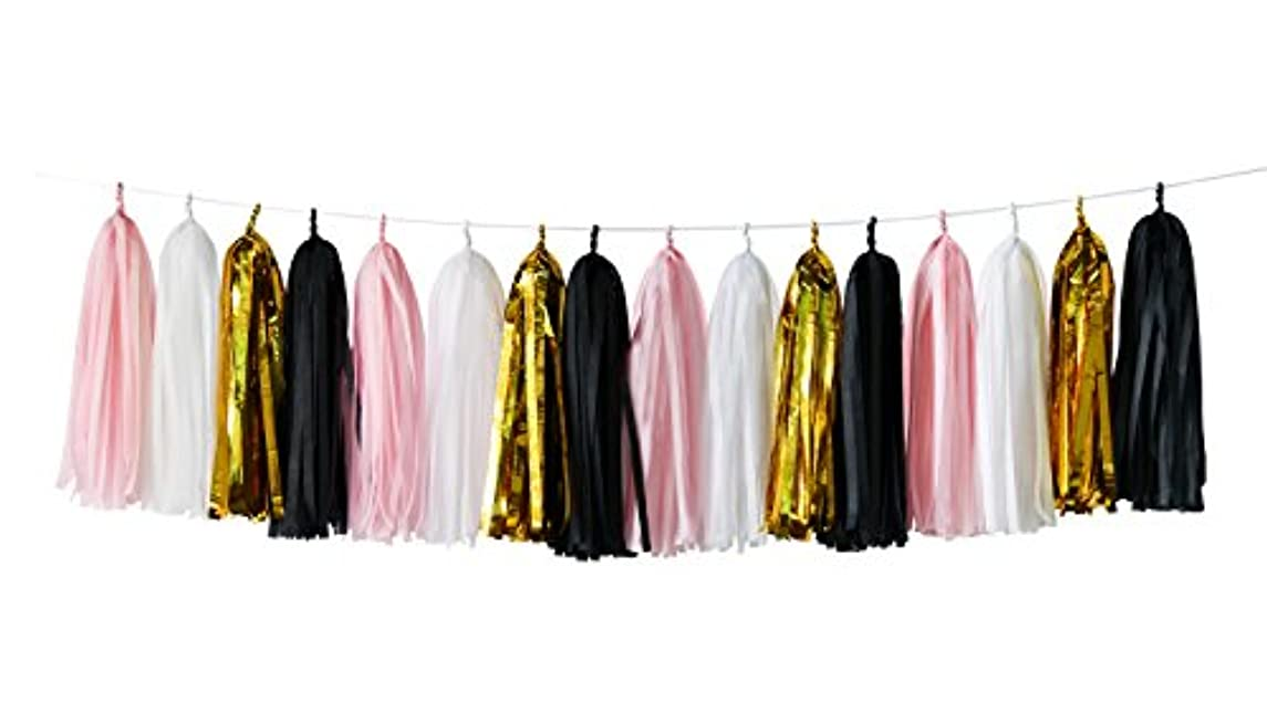 16 pcs White Pink Black Gold Tissue Paper Tassel Garland Bunting for Baby Shower, Bridal Shower, Birthday Party, Nursery Decoration French, Paris, Pink, Pink and Black Birthday Party Ideas