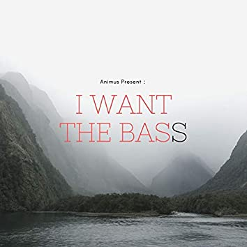 I Want The Bass