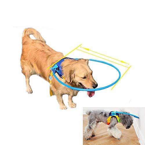AMhuui Beschermende Vest Ring, Halo Harnas voor Blinde Hond met Zieke Ogen voorkomen botsing ongevallen & Bouw Vertrouwen Honden Collide Muur, XS