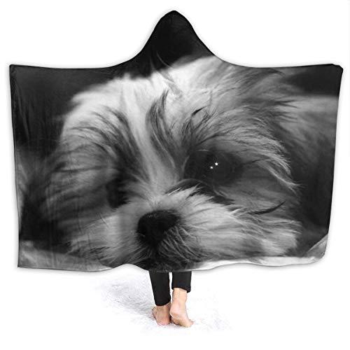 remmber me Shitzu Malteser Mix Puppy 80x60 Zoll Decke Super weiche Flauschige gemütliche warme Flauschige Plüschdecke für Bett Couch Stuhl Wohnzimmer Herbst Winter Frühling