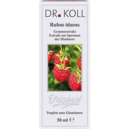 DR. KOLL Rubus idaeus Gemmoextrakt Tropfen, 50 ml Lösung