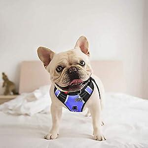BABYLTRL Hundegeschirr für große Hunde, kein Ziehen, verstellbar, reflektierendes Oxford-Gewebe, weiche Weste für große… 2