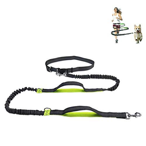 Pecco Handfreie Hundeleine Joggingleine mit Bauchgurt Verstellbare Freihandleine mit Sport Laufgürtel Jogging Hundeleine für große und mittelgroße Hunde.