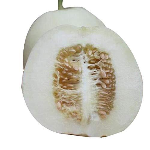 Oldhorse 20 pezzi/sacchetto Semi di melone bianco delizioso frutto di melone giardino Sementi