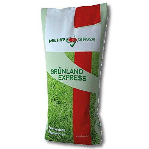 Wieseneinsaat Standard G Ix RHT 10 kg des Graines D'Herbe Prairie Section