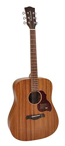 Richwood D-250 Gitarre