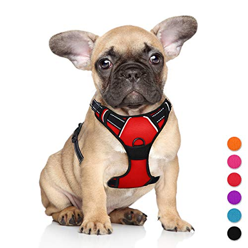 BARKBAY No Pull Dog Harness Large Step in Reflective Dog Harness with Front Clip and Easy Control Handle for Walking Training Running(Red,S)