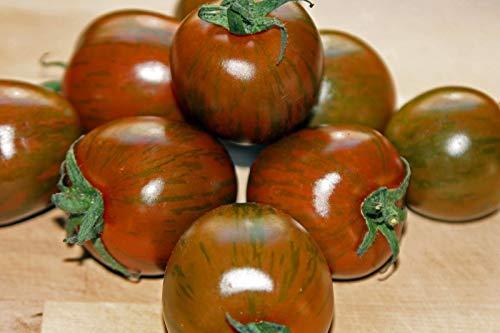50 Samen: Gemüse, Tomate, Black Zebra Cherry Erbstück Bio-Saatgut