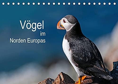 Vögel im Norden Europas (Tischkalender 2022 DIN A5 quer)