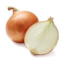Onion Yellow Organic, 1 Each
