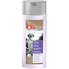 8in1 Protein Shampoo