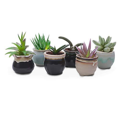 Pot de Fleur (Lot de 6) - Mini Pot de Plante en Céramique H 5,5 cm x D 6 cm avec 6 Designs Différents pour les Plantes Grasses - Idéal pour Décoration de Bureau, Maison, Jardin, Intérieur, Extérieur