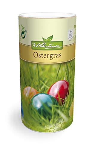 Ostergras reicht für 4-5 m² (Streudose Saatgut) (1)