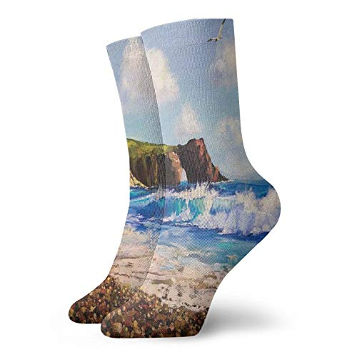 Funky Colorful Cushion Sport Socks,Painting Of A Sea Coast With Rock Beach Shore Wave And Seagull Nature Art Athletic Cushioned Running Performance Crew Socks For Men/Women
