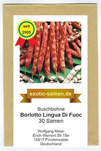 Buschbohne - Borlotto Lingua Di Fuoc - 30 Samen