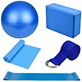 Dokpav Kit de Accesorios para Pilates Set de 5 Bandas Elásticas Fitness,Goma elasticas Musculacion,Bloque de Yoga,Pequeña Pelota de Pilates,Bandas de Resistencia para Yoga,Pilates,Fitness (Azul)