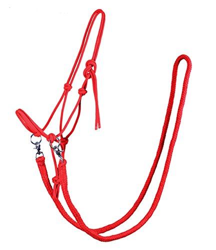 Knotenhalfter mit Zügel Halfter Reithalfter Arbeitshalfter QHP 7 Farben und 4 Größen (shetty, rot)
