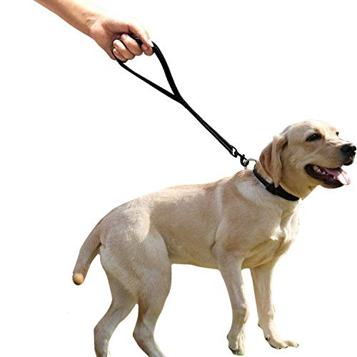 """CHMETE Heavy Duty Dog Leash with Comfortable Padded Handle Reflective Training Dog leashes for Medium Large Dogs Up to 80lbs (25"""" Short Dog Leash)"""