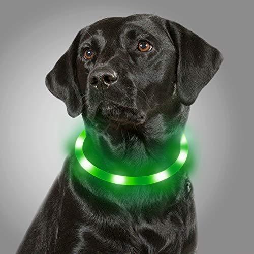 Joytale Collar Luminoso Perro, Collar para Mascotas LED Ajustables con Luz, Collares Recargable USB para Perros Pequeños, Medianos y Grandes, Verde