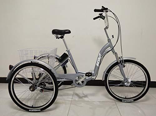 SCOUT Triciclo Elettrico di qualità, Telaio Pieghevole in Lega, 250 W, 12,8 Ah, 25 KM/H limitato, 5 Livelli di Assistenza alla pedalata (Grigio)